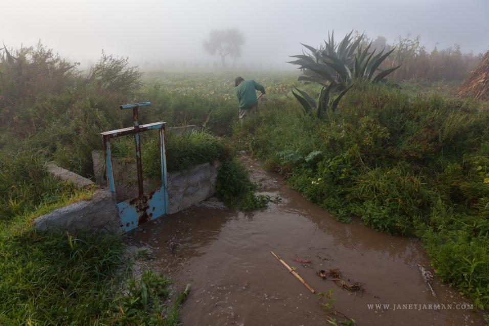 Aguas Negras Mexico City S Water Problems Janet Jarman